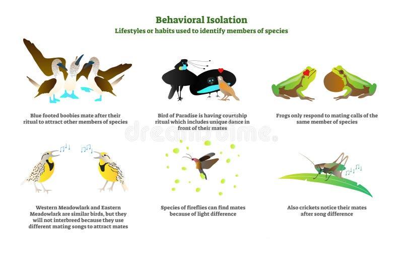 Beteende- uppsättning för samling för isoleringsvektorillustration Förklaring och märkta exempel i natur med fåglar, grodor och s royaltyfri illustrationer