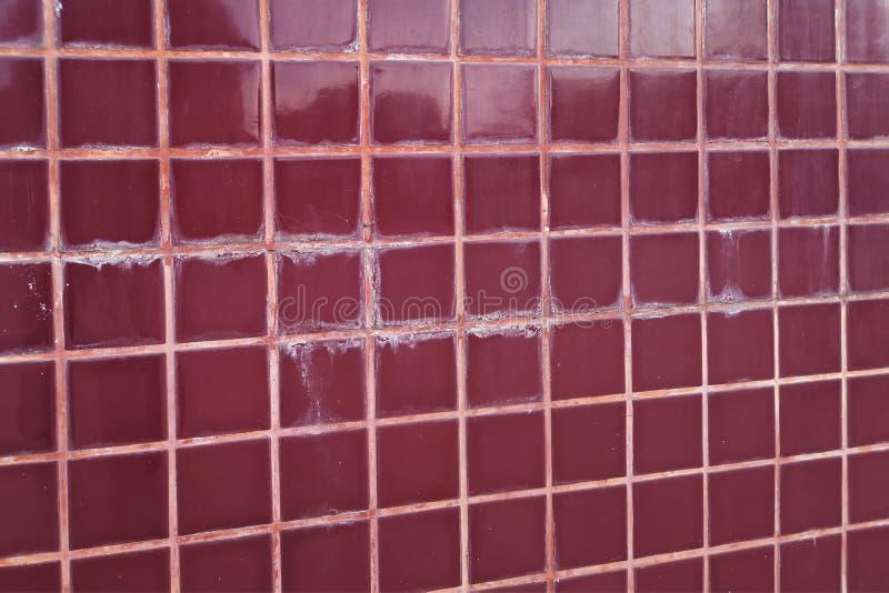 Betegelde vloer in de selectievlekken en paddestoel van het toiletmisbruik Het concept vochtigheid en vuil royalty-vrije stock afbeeldingen