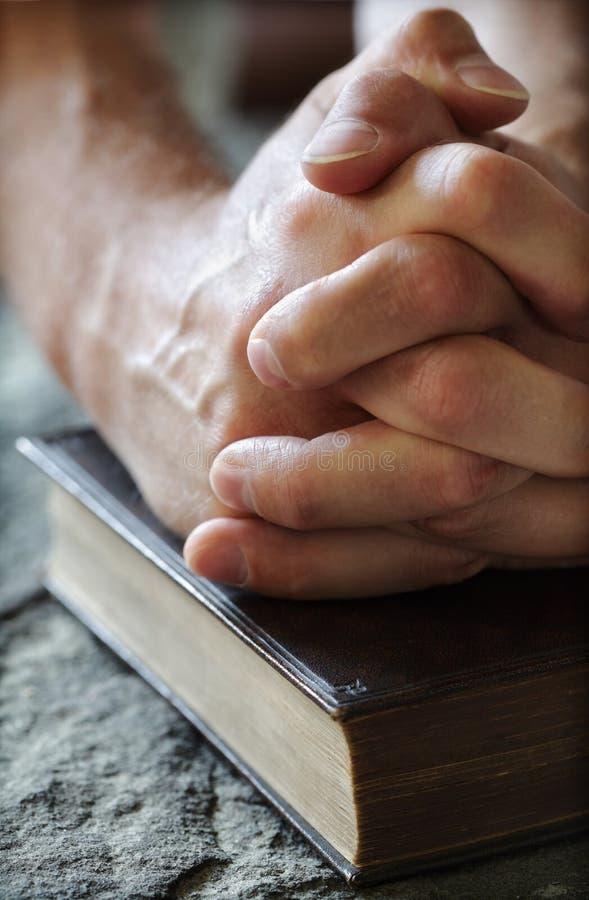 Betende Hände auf einer heiligen Bibel stockfotografie