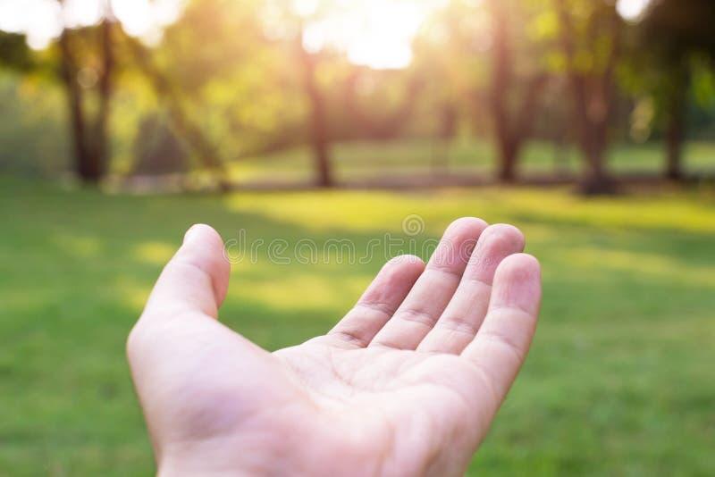 Betende Hände Geben einer helfenden Hand stockfotos