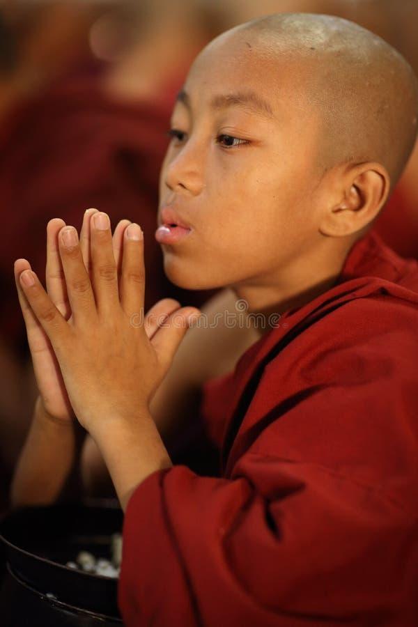 Betender buddhistischer Anfänger stockbild
