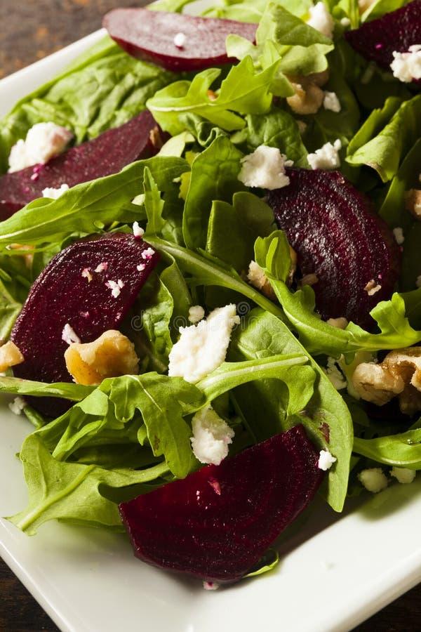Beterraba e salada verdes cruas da rúcula imagem de stock royalty free