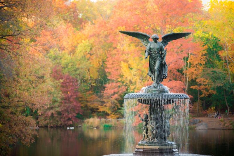 Bethesda Fountain stock foto's