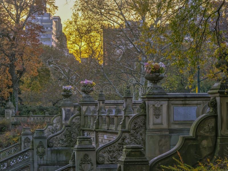 Bethesda Terrace en Fontein royalty-vrije stock foto's