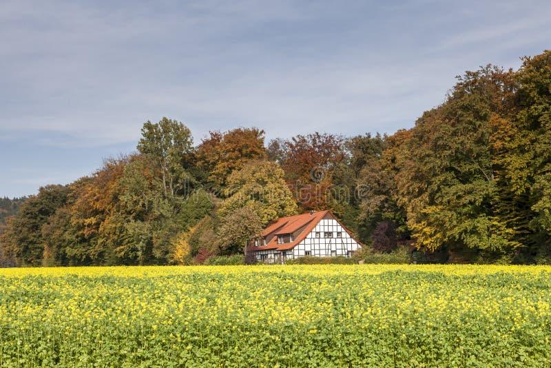 Betimmerd huis in Slechte Iburg, het land van Osnabrà ¼ CK, Nedersaksen, Duitsland stock foto's