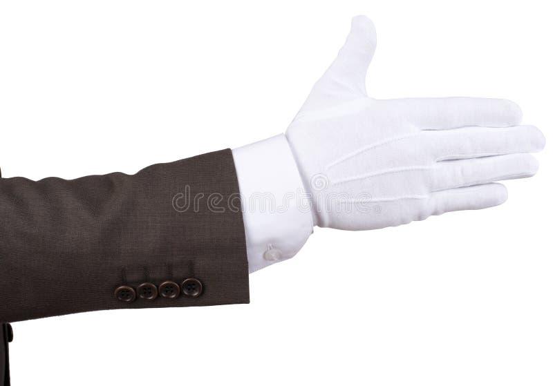 Betjänter handskakning som isoleras royaltyfri bild