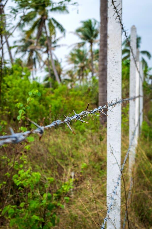 Beton poczta wykładać w górę budowy ogrodzenie drut kolczasty w dżungli obraz royalty free