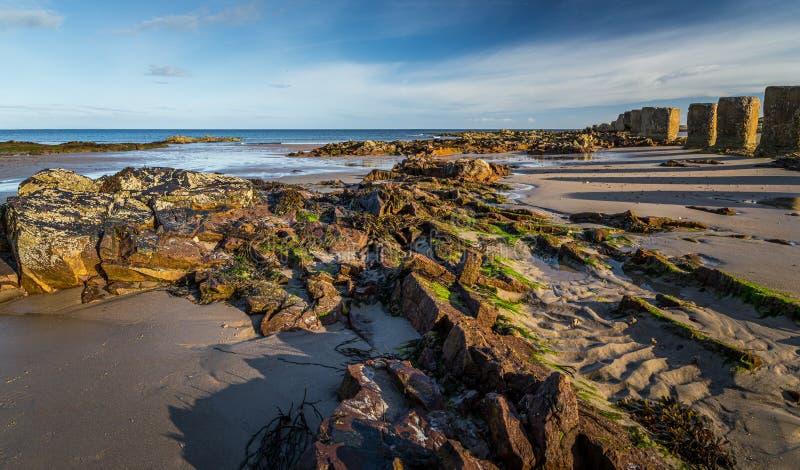 Betonblöcke auf dem Strand im Moray stockfotos