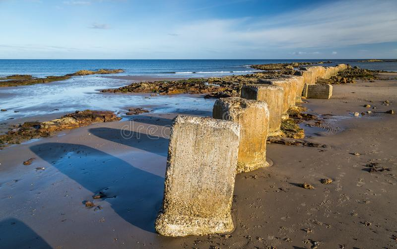 Betonblöcke auf dem Strand im Moray stockfoto