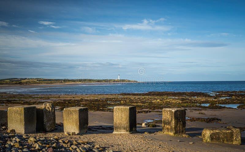 Betonblöcke auf dem Strand im Moray stockbild