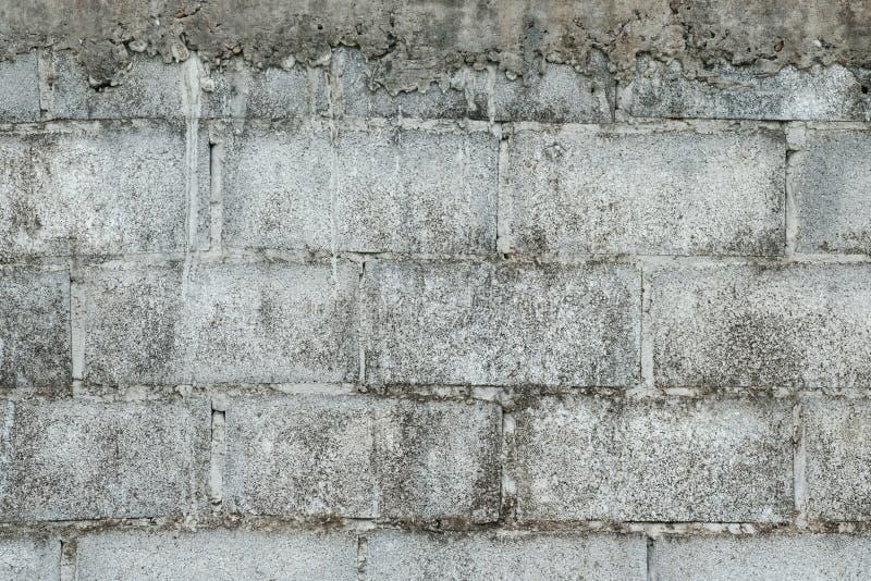 Betonblockbeschaffenheit stockbilder