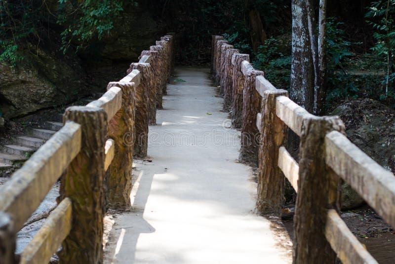 Betonbrücke im Wald, stockfoto