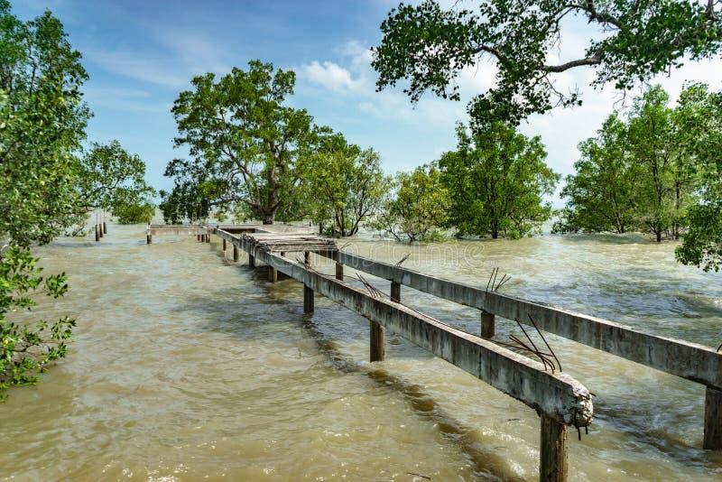 Betonbrücke wird nicht auf Meer gebaut lizenzfreie stockfotografie