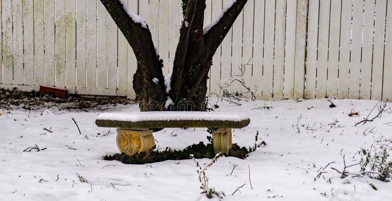 Betong vid ett träd i vintern royaltyfri fotografi