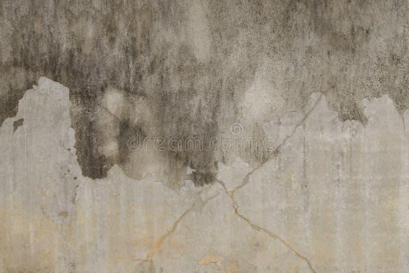 Betongvägg med strimmor av royaltyfri fotografi