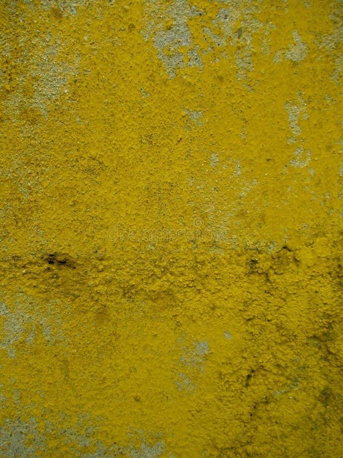 Betongvägg som målas i guling royaltyfria foton