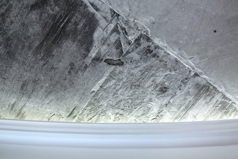 Betonmauer und Gesims stockfoto