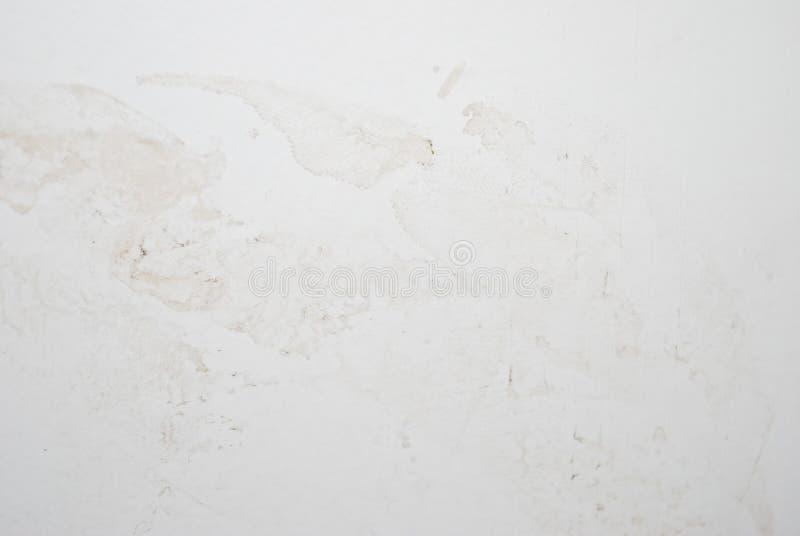 betonowa ściana biel fotografia royalty free
