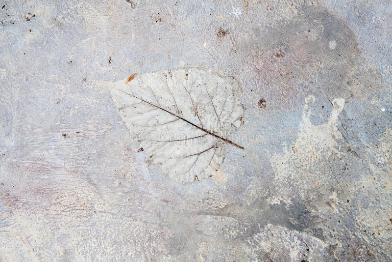 Betonowa podłogowa tekstura fotografia stock