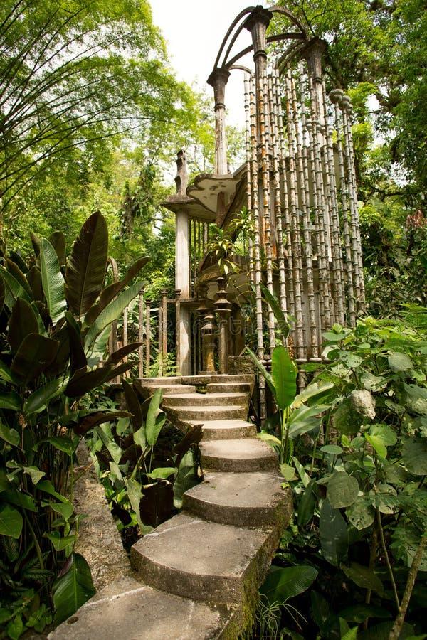Betonowa struktura w dżungli zdjęcia royalty free