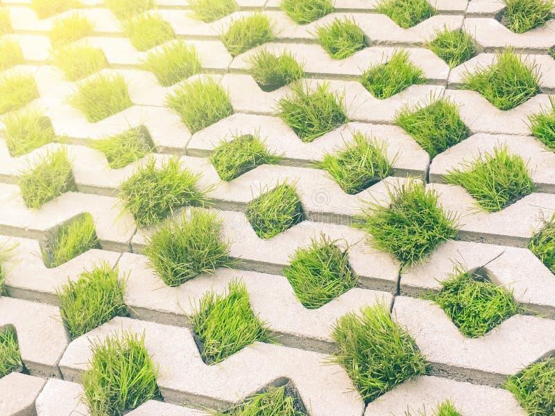 Betonowego bloku i trawy liścia wzoru chodniczek fotografia stock