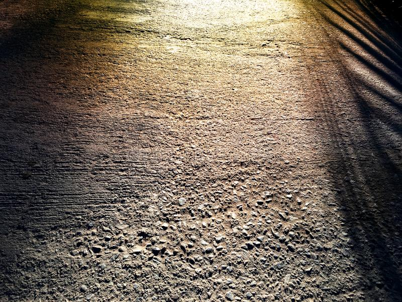 Betonowej powierzchni tło przejście z dużym liścia cienia odbiciem na ziemi obrazy royalty free
