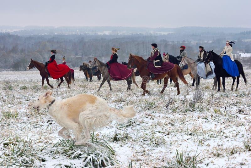Beträffande-lag av den traditionella jakten med ryssvarghundar royaltyfria bilder