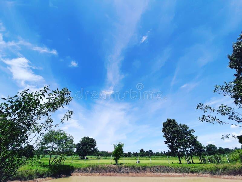 Betrachten Sie den Himmel, lizenzfreie stockfotos