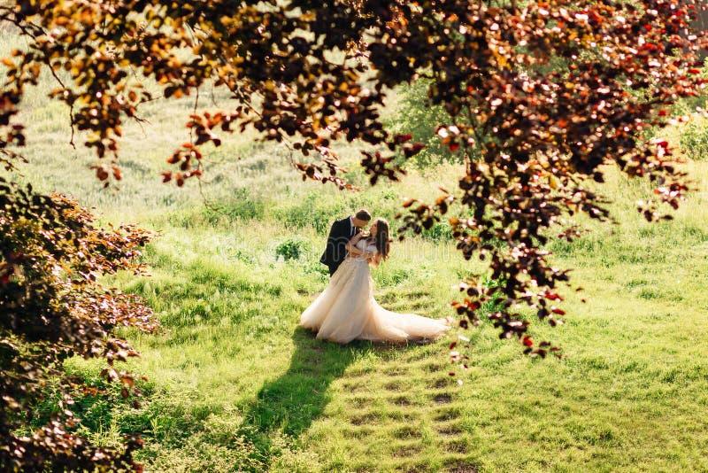 Betrachten Sie durch rote Blätter verbiegender Braut des Bräutigams vorbei stockbilder