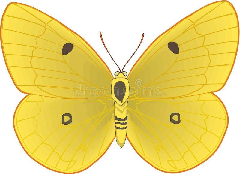 Betrokken Gele Vlinderillustratie vector illustratie