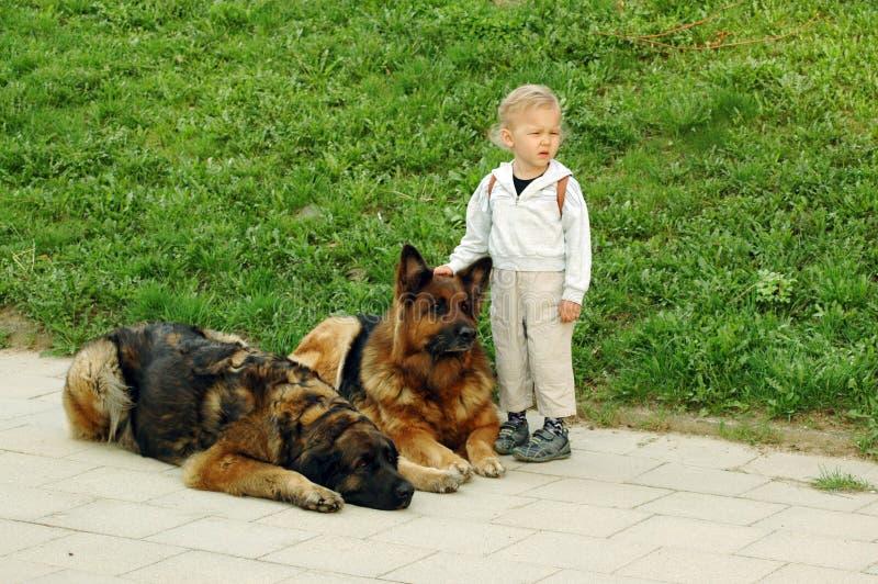 Betrouwbare bescherming. stock fotografie