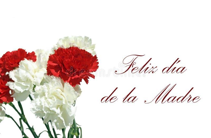 Betrugfoto de un Felicitaciones-por EL DÃa de la Madre ramo de Claveles lizenzfreie stockbilder