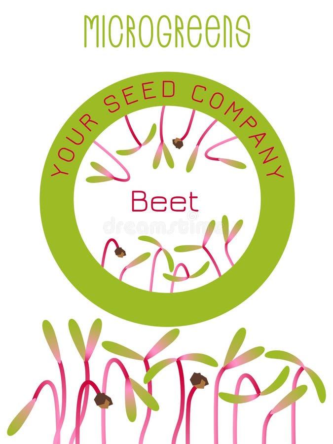 Betterave de Microgreens Conception d'emballage de graine, élément rond au centre Graines de germination d'une usine illustration stock