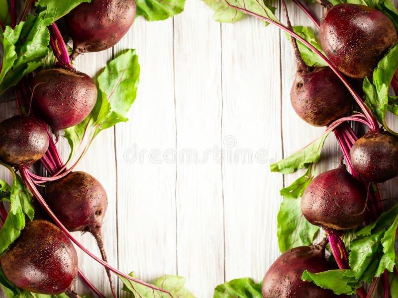 Betteraves organiques fraîches photos stock