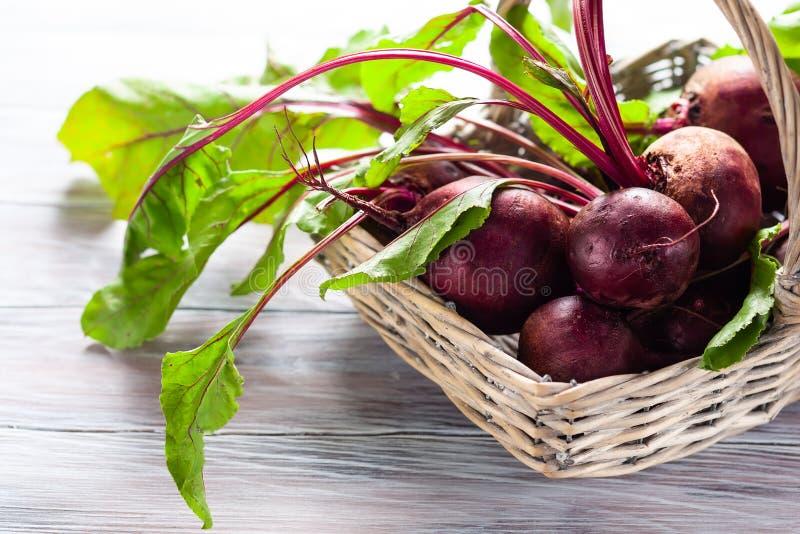 Betteraves organiques fraîches images stock