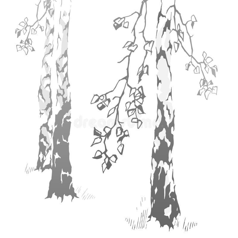 Betulle disegnate a mano royalty illustrazione gratis