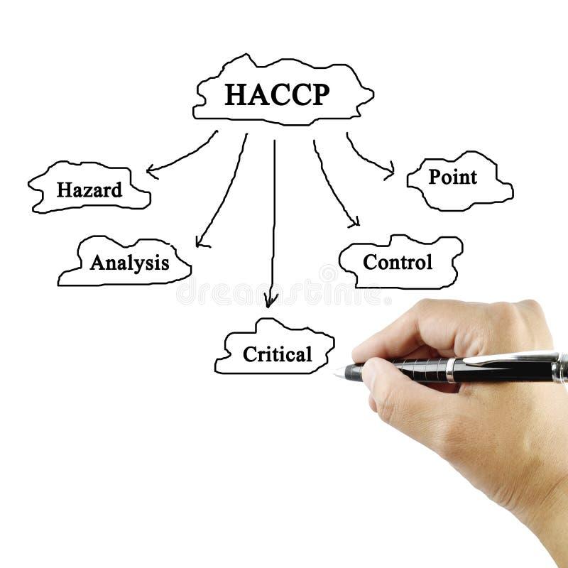 Betydelse för kvinnahandhandstil av HACCP-begreppet (faraanalys av royaltyfri fotografi