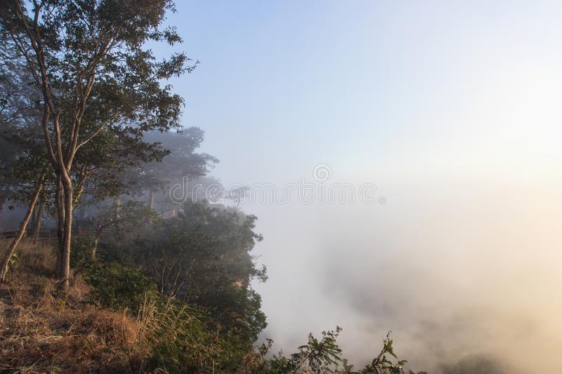 Beuatiful view of fog in the sunrise, Sisaket, Thailand. Beuatiful view of fog in the sunrise at Pha Mor E-Dang, Sisaket, Thailand royalty free stock photos