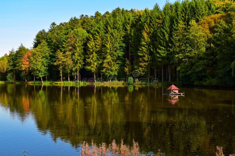 Beuerbachermeer Duitsland, in de herfst stock afbeeldingen