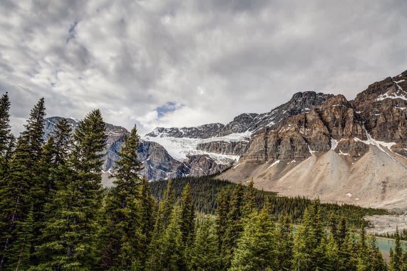 Beugen Sie Seebereich Hahnenfuß-Gebirgs-Banff-Staatsangehörigen Park-Alberta-Canad lizenzfreies stockbild