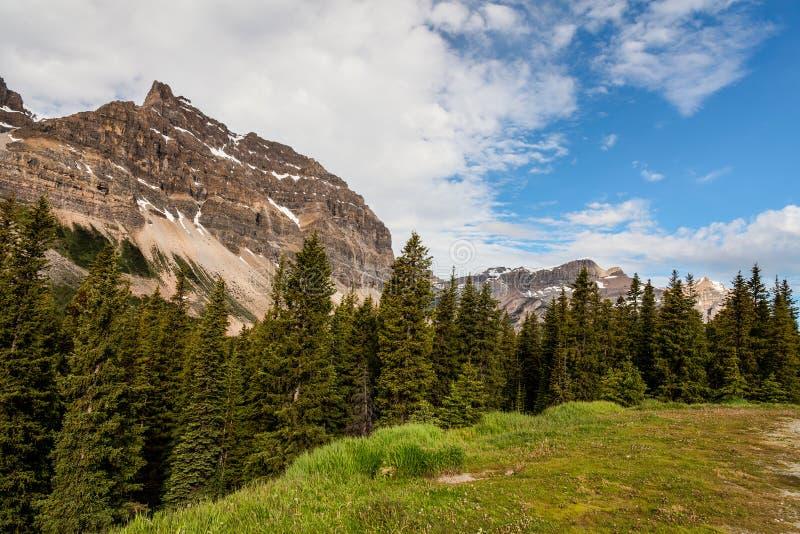 Beugen Sie Seebereich Hahnenfuß-Gebirgs-Banff-Staatsangehörigen Park-Alberta-Canad stockbild