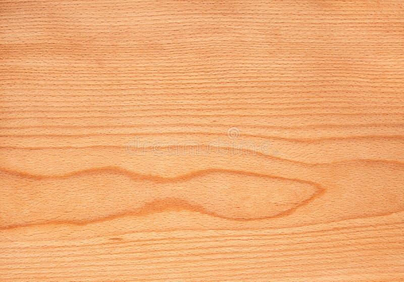Beuk houten textuur, de achtergrond van het boomvernisje royalty-vrije stock afbeelding