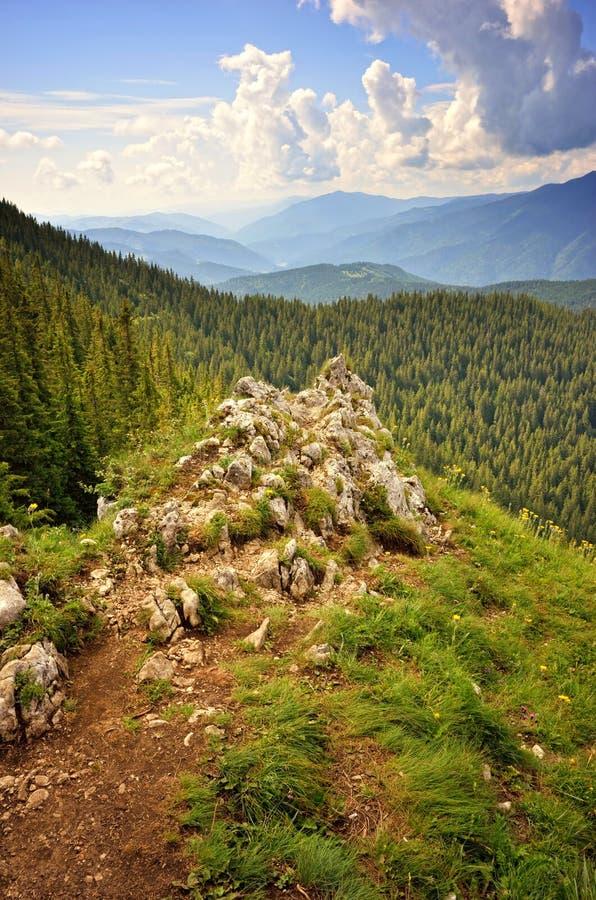 Beundra naturen i berg arkivbilder