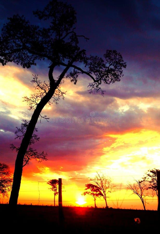 Beuty ταξίδι ηλιοβασιλέματος στοκ εικόνες