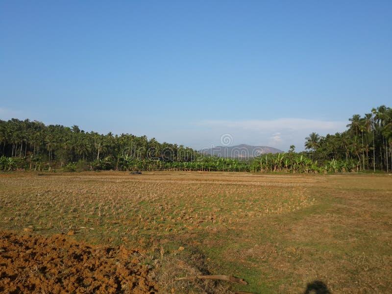Beuty полное scape земли с горой стоковое фото rf