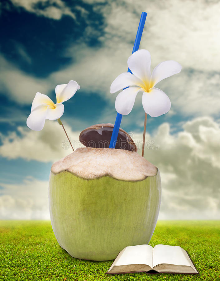 Beva l'acqua di cocco e legga un libro fotografie stock