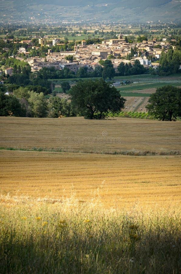 Bevagna Umbria royaltyfri bild