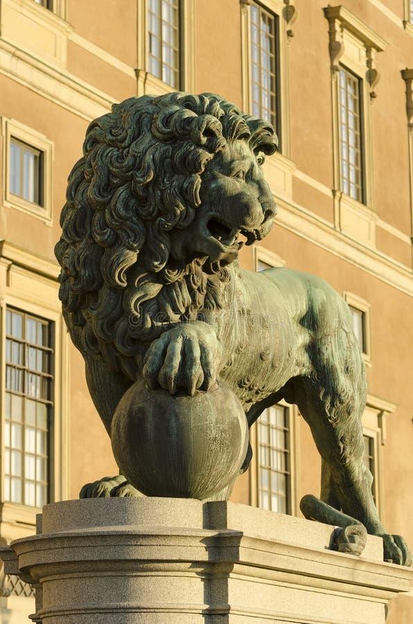 Bevaka lionen arkivfoto