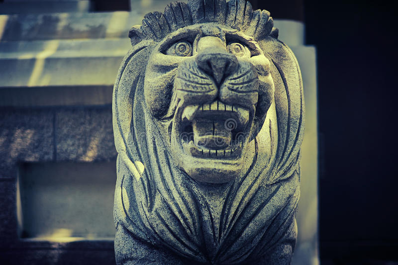 Bevakar den Manchurian tigern för stenen ingången arkivfoto