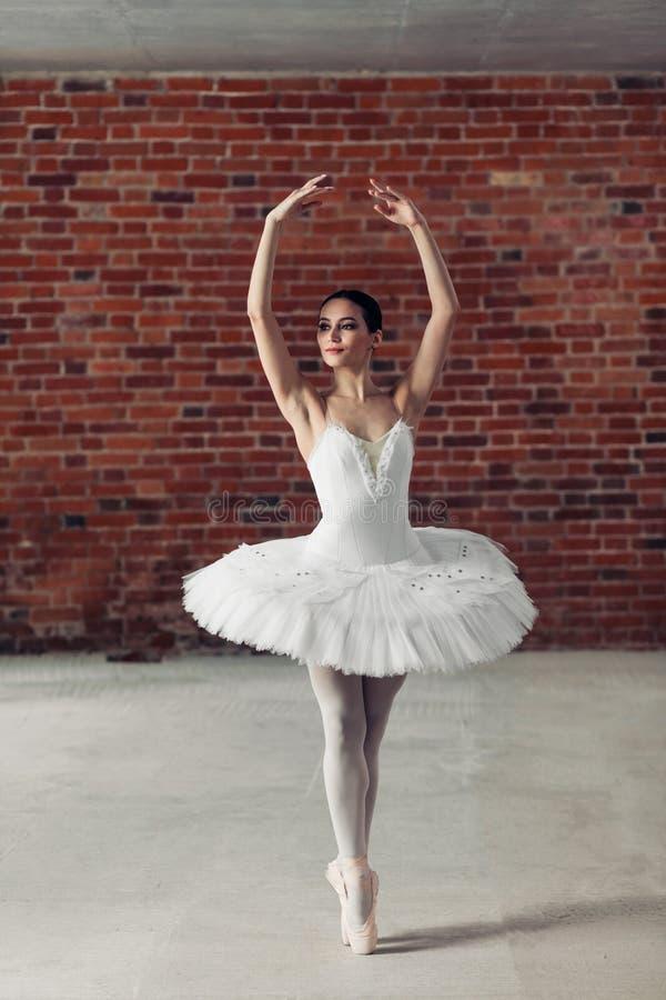 Bevallige jonge begaafde zich op tenen bevinden en ballerina die opzij kijken royalty-vrije stock fotografie